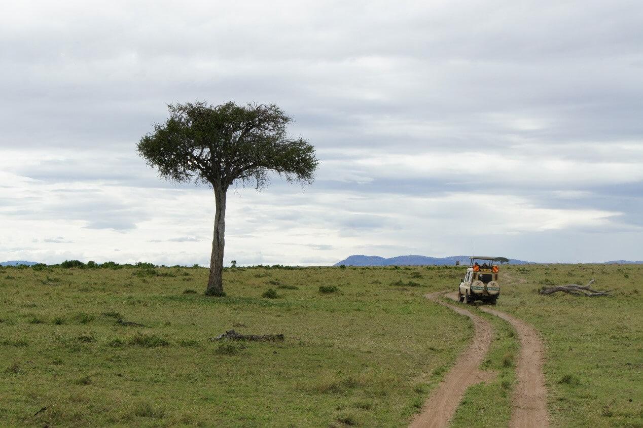 馬賽馬拉國家公園